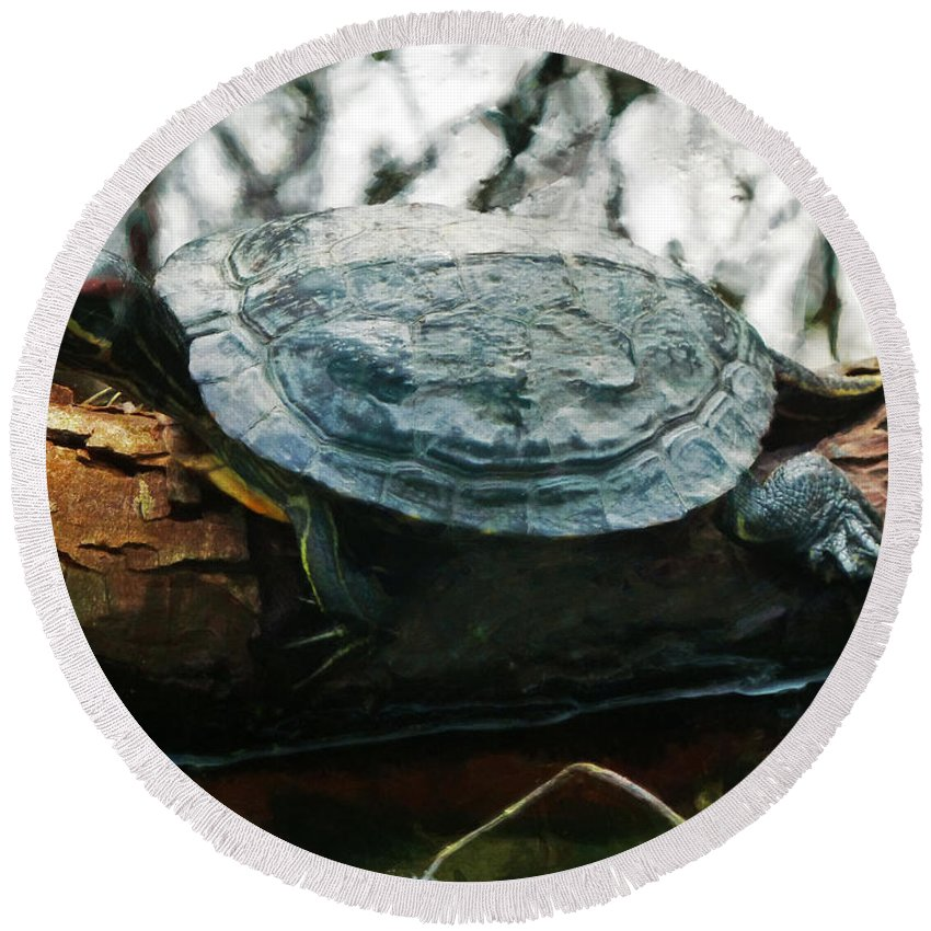 Red Eared Slider Round Beach Towel featuring the photograph The Red Eared Slider by Steve Taylor