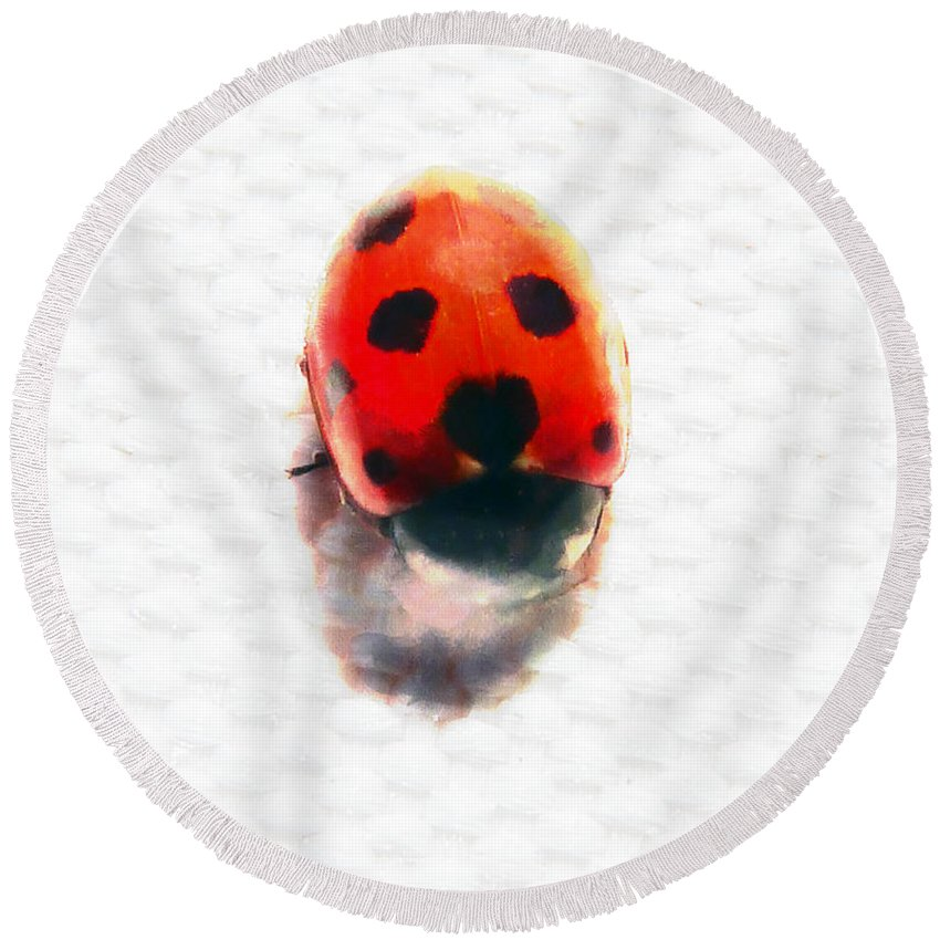 Ladybird Round Beach Towel featuring the photograph The Shy Ladybug by Steve Taylor