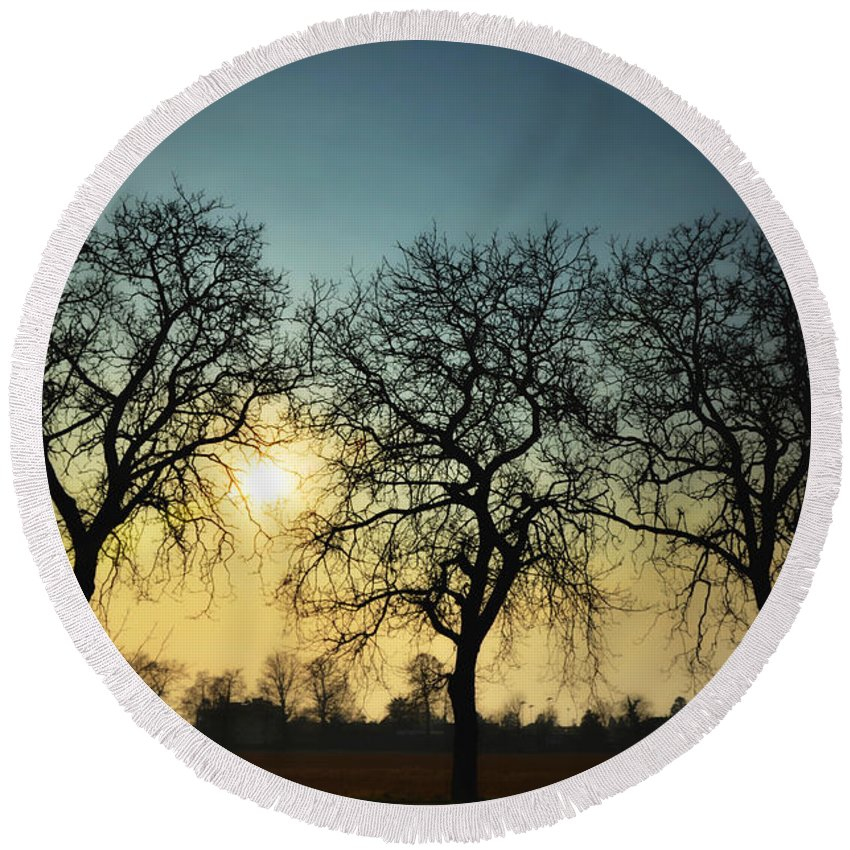 Sun Round Beach Towel featuring the photograph Three Trees by Mats Silvan