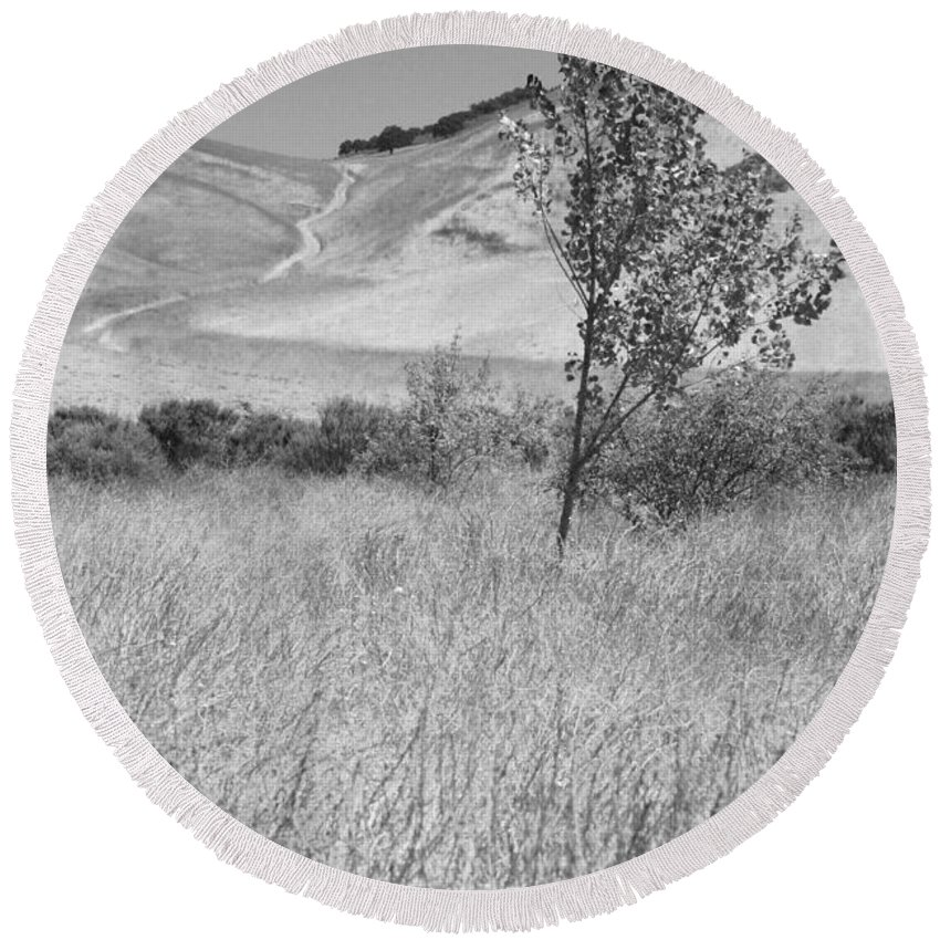 Los Alamos Round Beach Towel featuring the photograph Through The Tall Grasses by Kathleen Grace