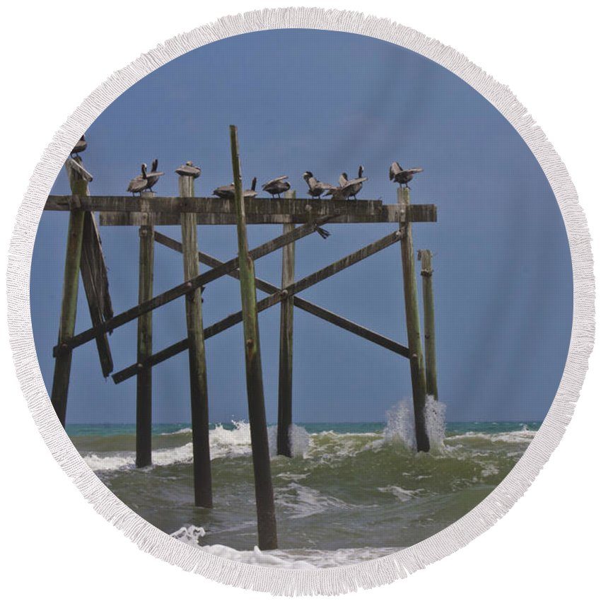 Topsail Round Beach Towel featuring the photograph Topsail Ocean City Pelicans by Betsy Knapp