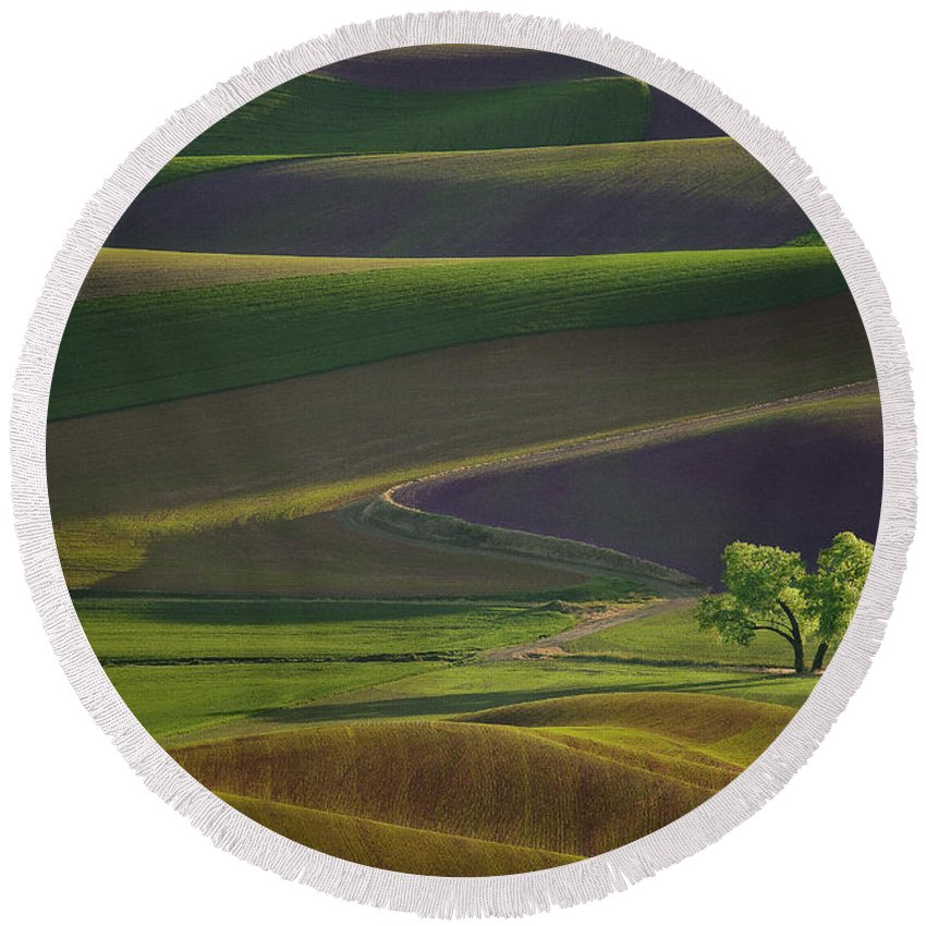 Palouse Round Beach Towel featuring the photograph Tree In The Palouse by Lori Grimmett