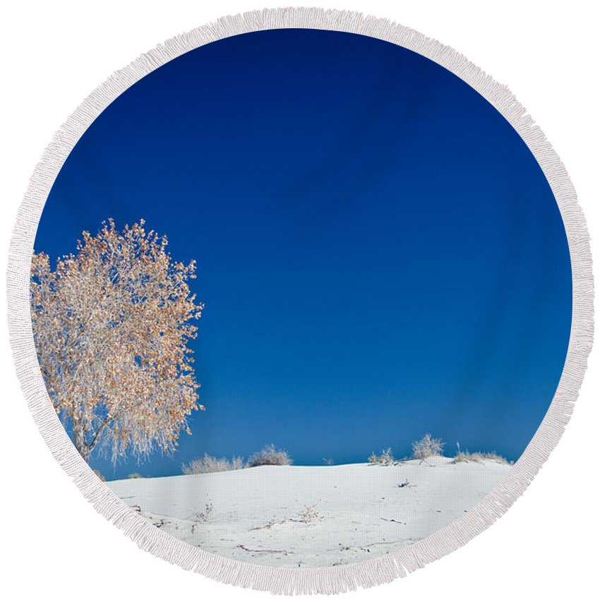 White Sands National Monument Round Beach Towel featuring the photograph Tree In White Sands by Ralf Kaiser