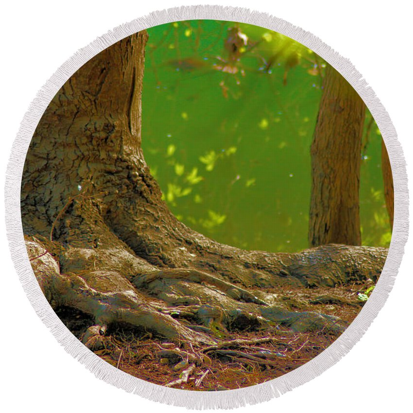 Tree Round Beach Towel featuring the photograph Tree Roots by Karen Wagner