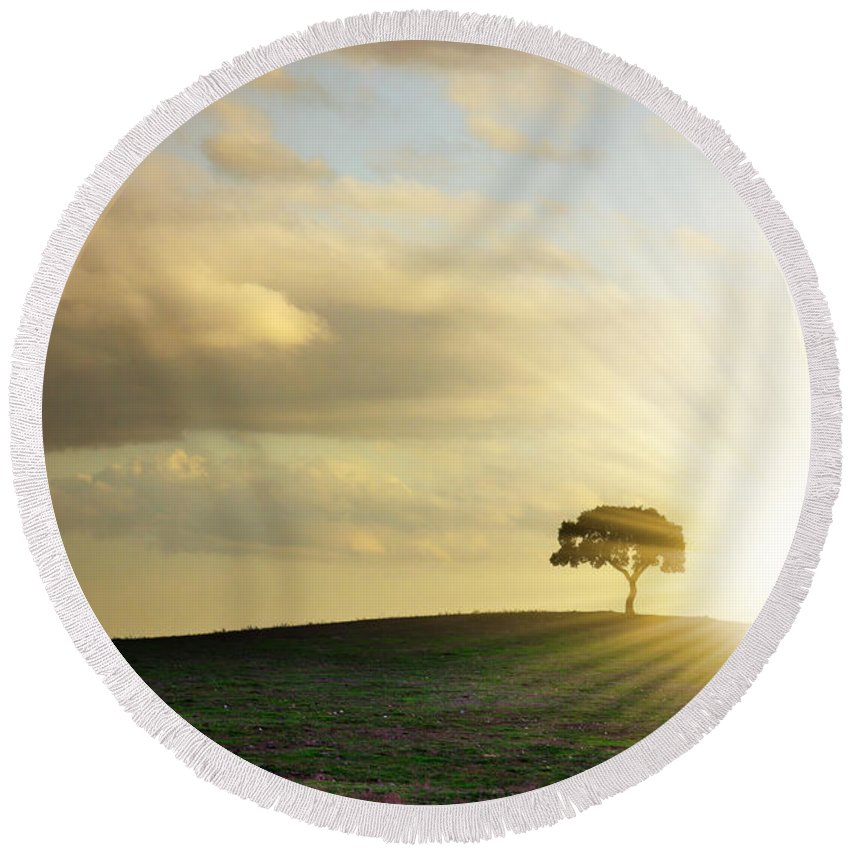 Background Round Beach Towel featuring the photograph Tree Silhouette by Carlos Caetano