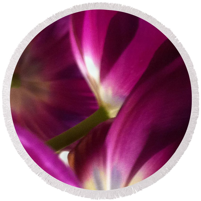 Tulips Round Beach Towel featuring the photograph Tulip Weave by Kathy Corday