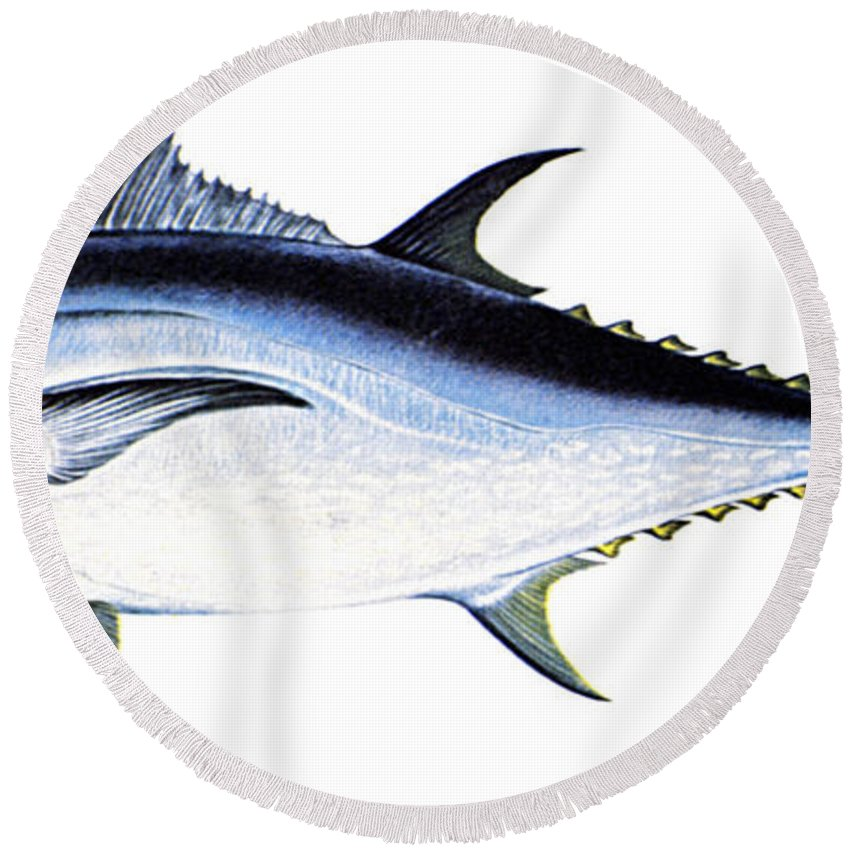 Biology Round Beach Towel featuring the photograph Tuna by Granger