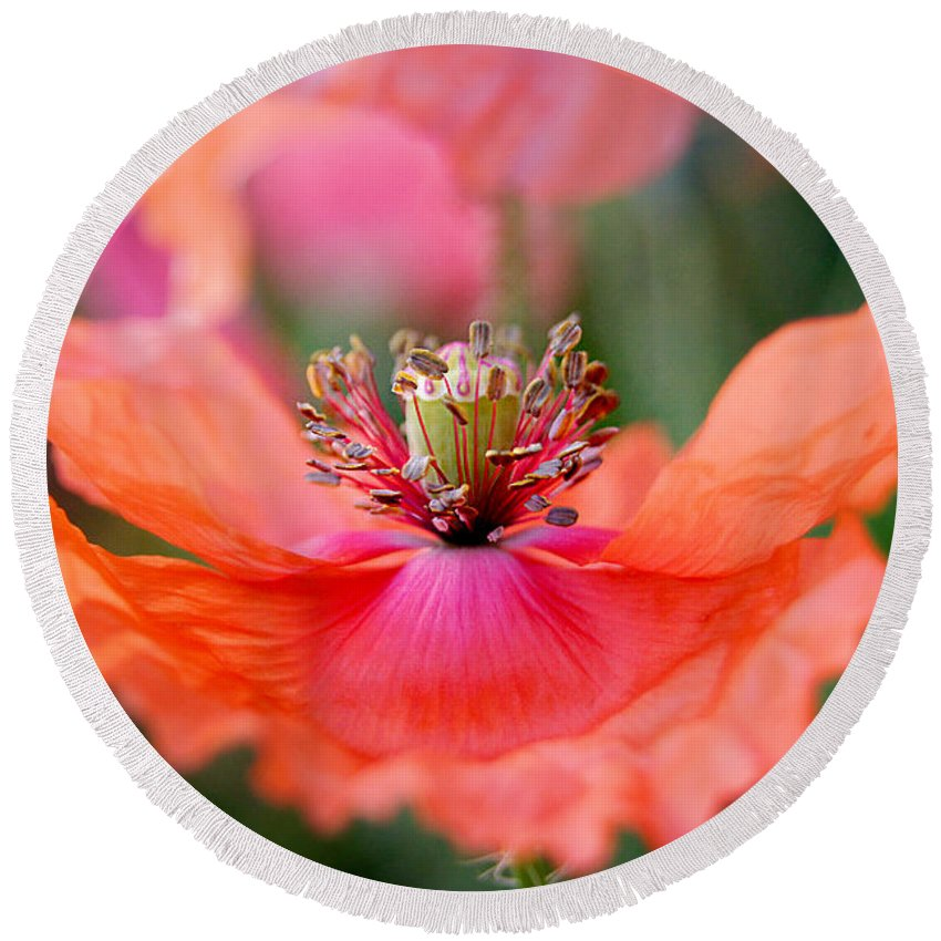 Wildflower Round Beach Towel featuring the photograph Twirling Floral Skirt by Bill Pevlor