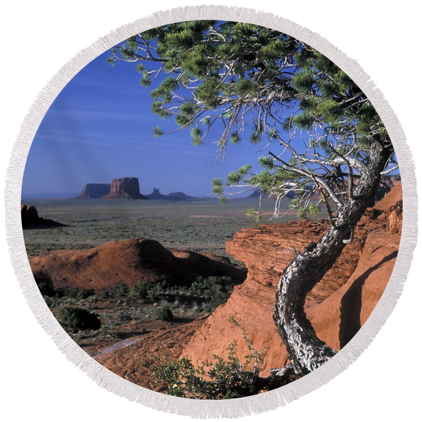 Monument Valley Round Beach Towel featuring the photograph Twisted Tree Monument Valley by Dave Mills