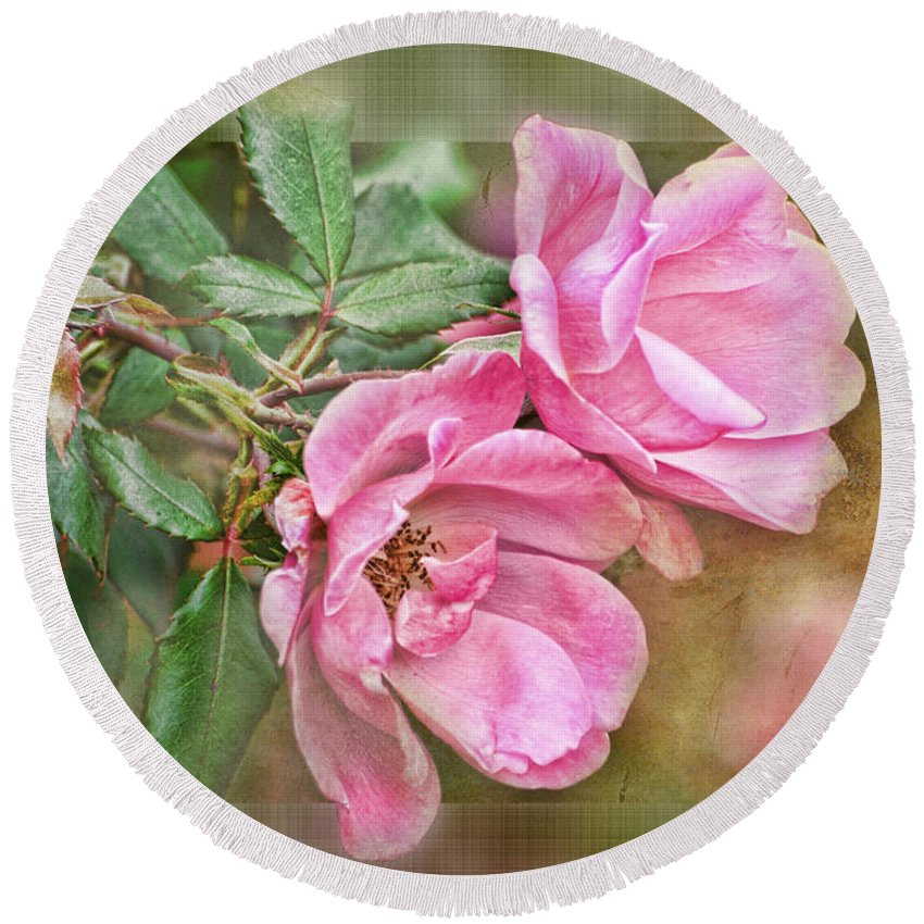 Nature Round Beach Towel featuring the photograph Two Pink Roses II Blank Greeting Card by Debbie Portwood