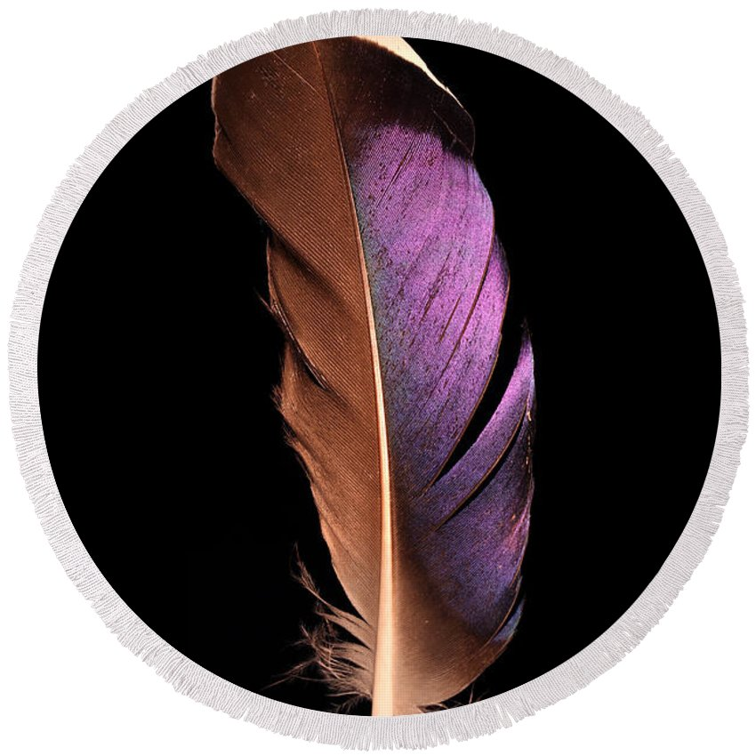 Feather Round Beach Towel featuring the photograph Violet Splendor by Adam Long