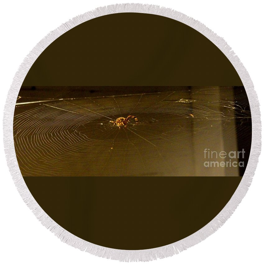 Spider Round Beach Towel featuring the photograph Waiting Spider by Meandering Photography
