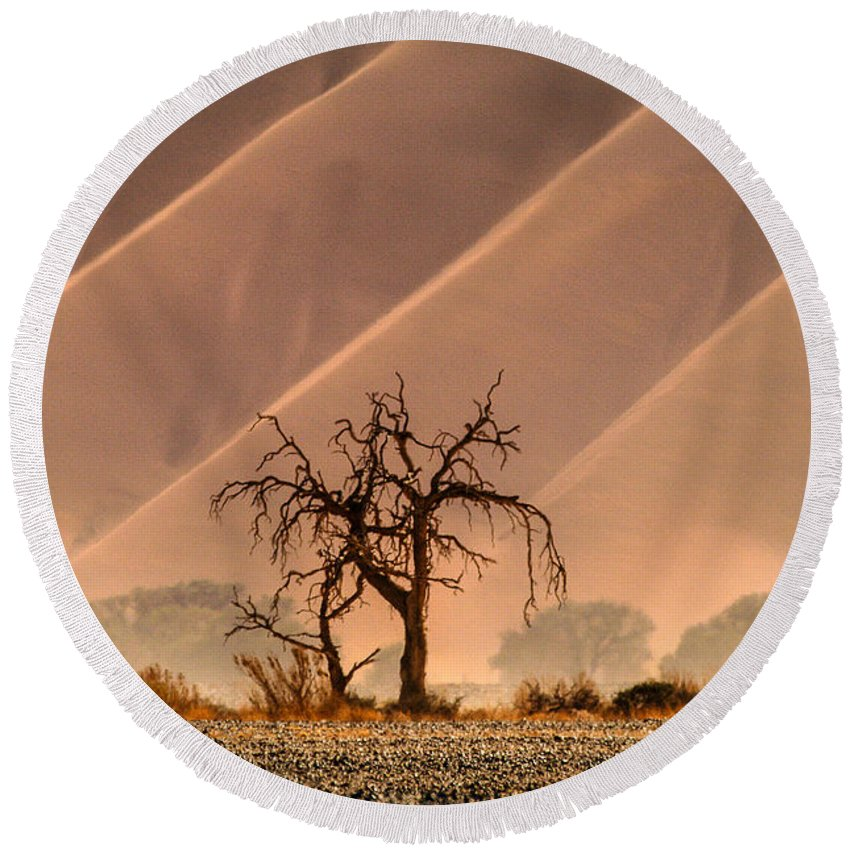 Africa Round Beach Towel featuring the photograph Wave Tree by Alistair Lyne