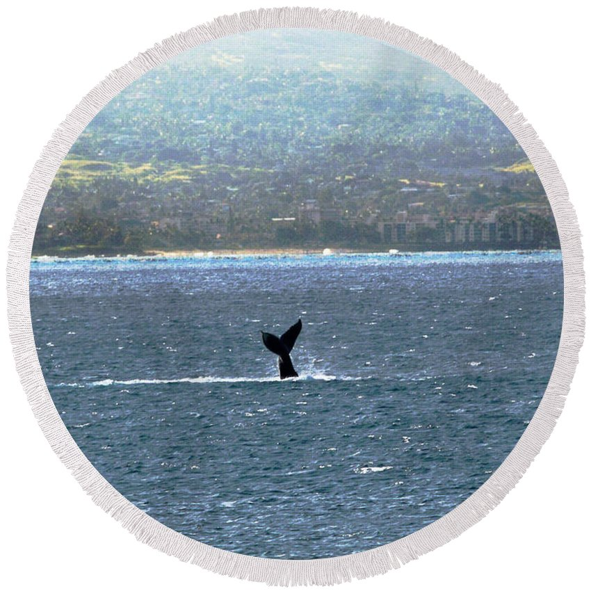 Whale Photography Round Beach Towel featuring the photograph Whale Tail I by Patricia Griffin Brett