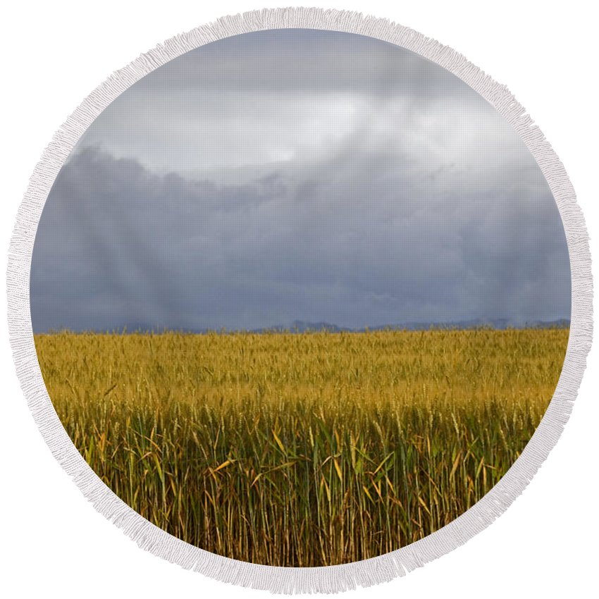 Farming Round Beach Towel featuring the photograph Wheat Field And Storm by Karen Ulvestad