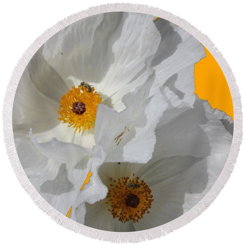 Argemone Round Beach Towel featuring the photograph White Poppies On Yellow by Betty Northcutt