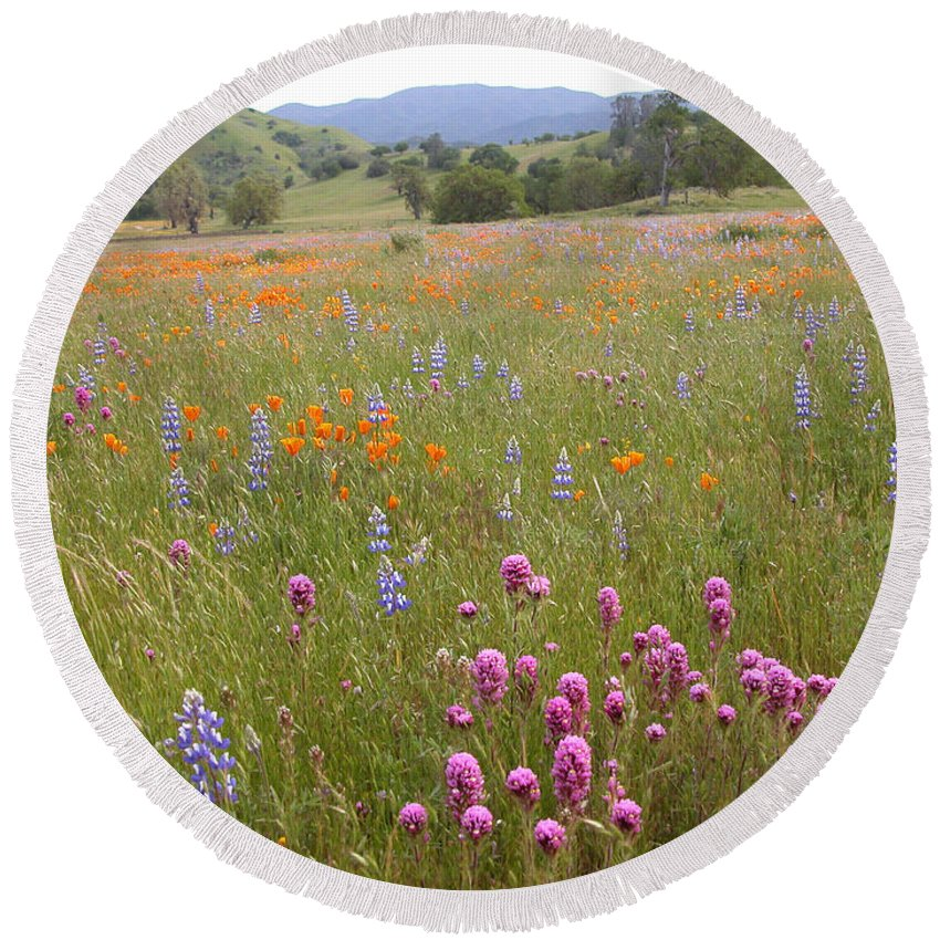 Shell Creek Wildflowers Round Beach Towel featuring the photograph Wildflower Wonderland 6 by Lynn Bauer