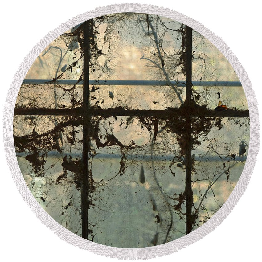 Window Vines Blue Sky Glass Reflection Old Building Round Beach Towel featuring the photograph Window Vines by Patricia Caldwell
