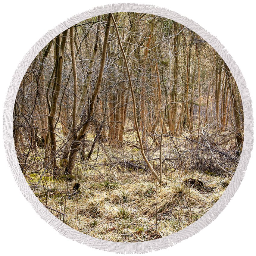 Branch Round Beach Towel featuring the photograph Woodland by Svetlana Sewell
