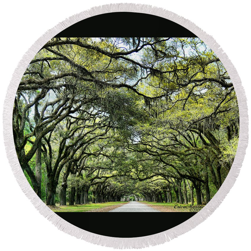 Ga Round Beach Towel featuring the photograph Wormsloe Plantation Entrance by Ericamaxine Price