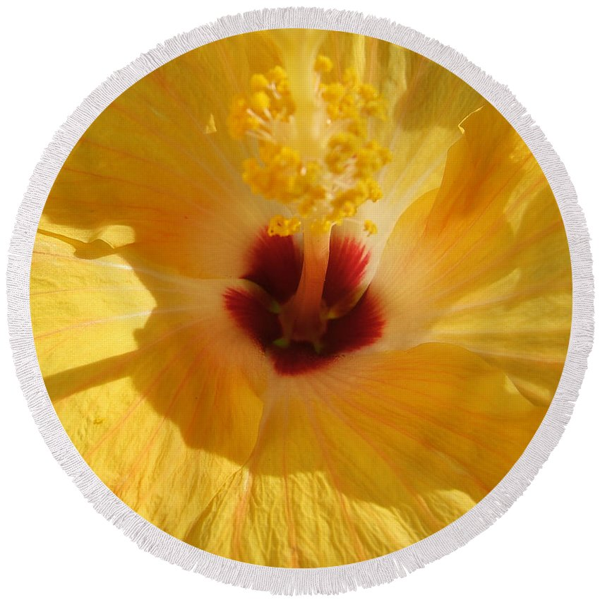 Flower Round Beach Towel featuring the photograph Yellow Flower by Melissa Gallant