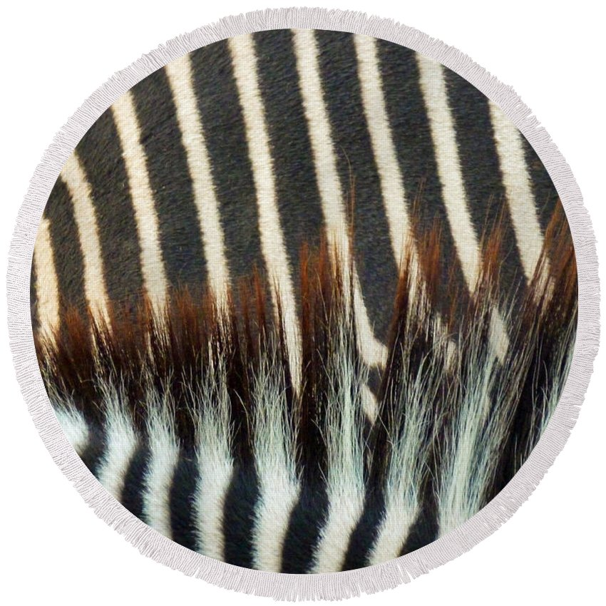 Zebra Stripes Round Beach Towel featuring the photograph Zebra Stripes by Methune Hively