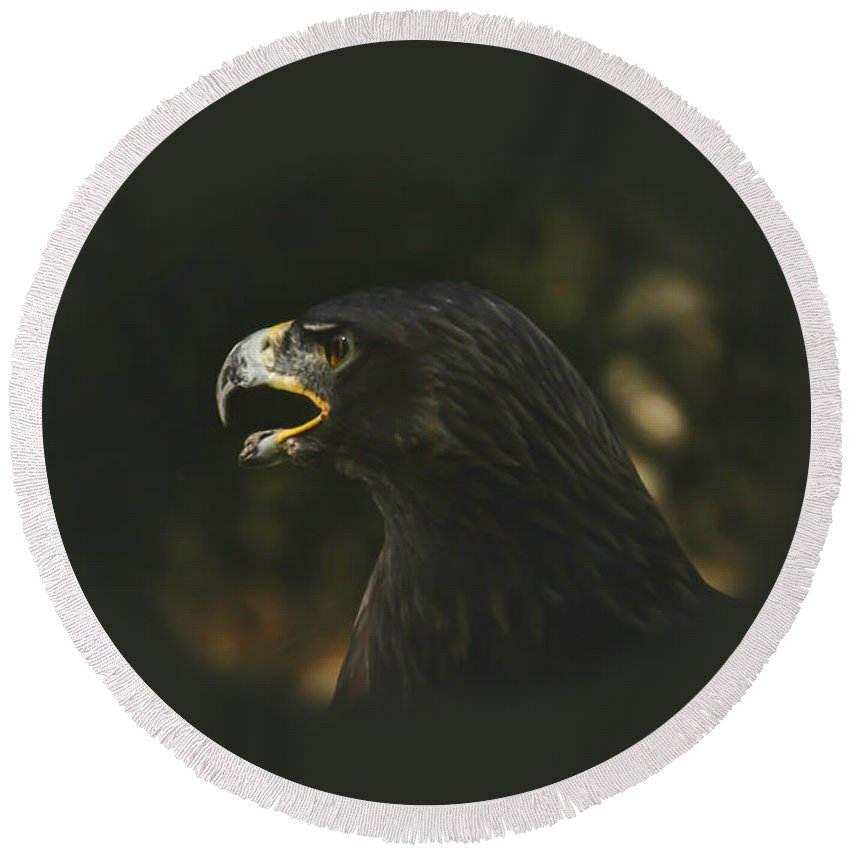 Eagle Round Beach Towel featuring the photograph Golden Eagle - A Portrait by Mother Nature