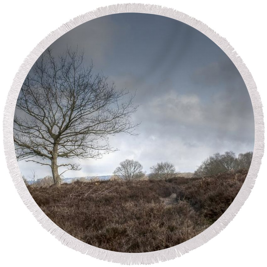 Tree On The Common Round Beach Towel featuring the photograph Tree On The Common by Dave Godden