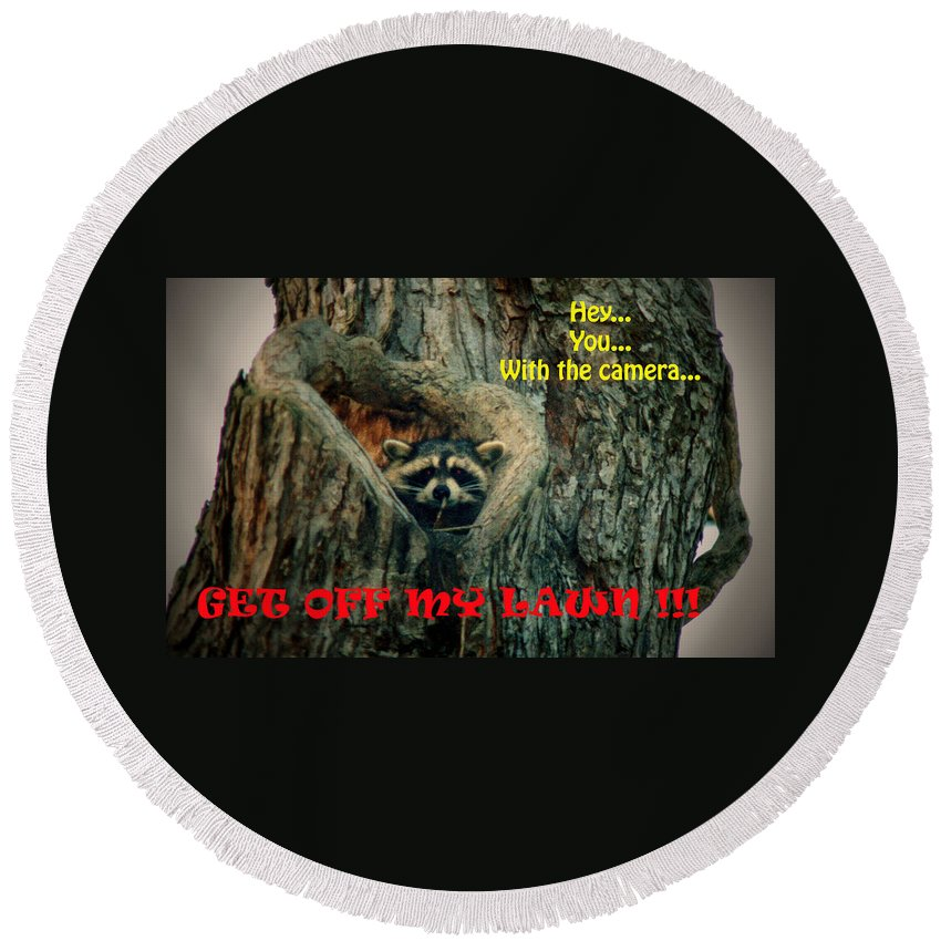 Raccoon Round Beach Towel featuring the photograph 072509-17-t by Mike Davis