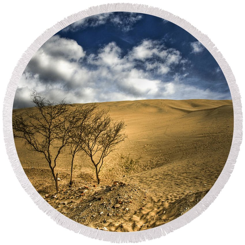 Argentina Round Beach Towel featuring the photograph Argentina Desert Landscape by Dan Yeger