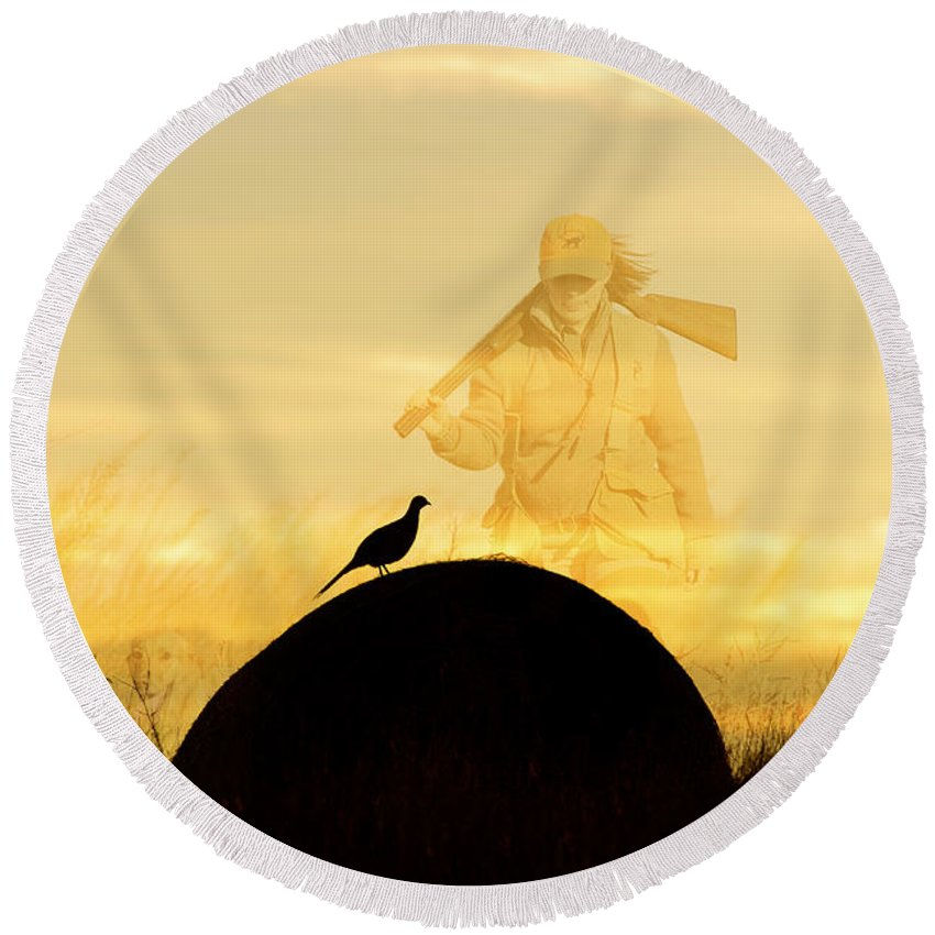Round Beach Towel featuring the photograph Barnes1 by Chip Laughton