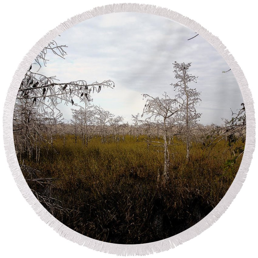 Big Cypress National Preserve Round Beach Towel featuring the painting Big Cypress by David Lee Thompson