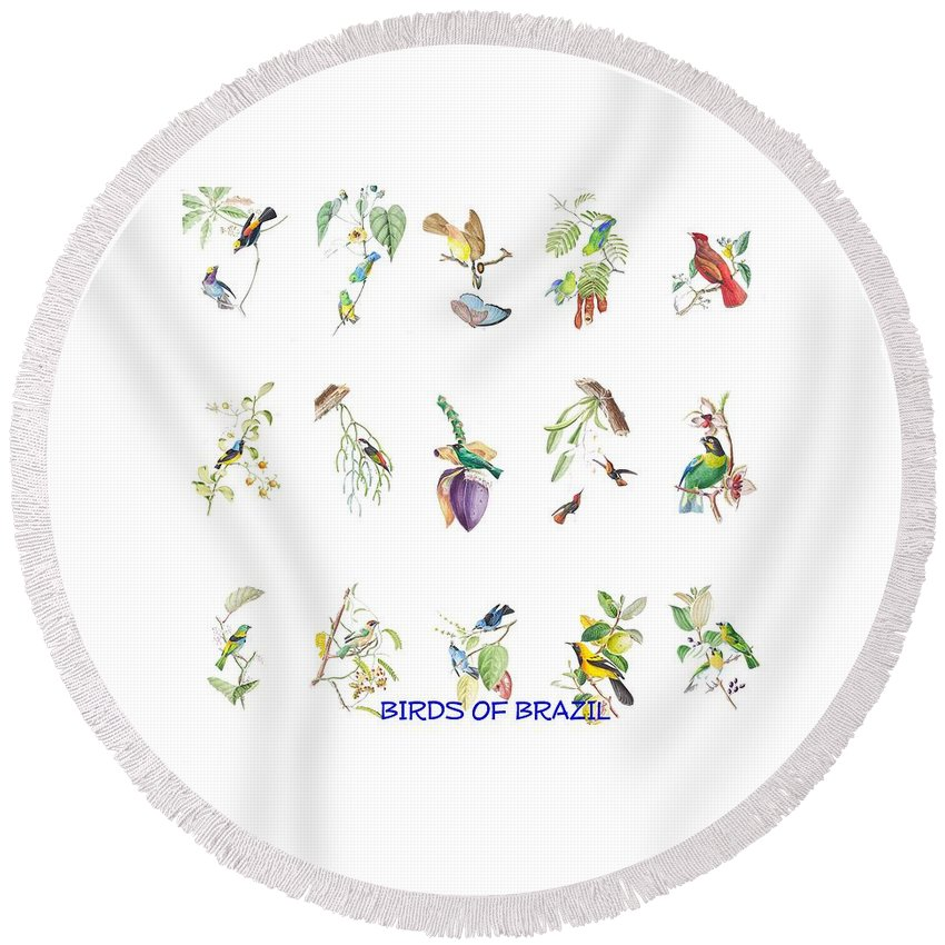 Tropical Round Beach Towel featuring the painting Birds Of Brazil by Philip Ralley