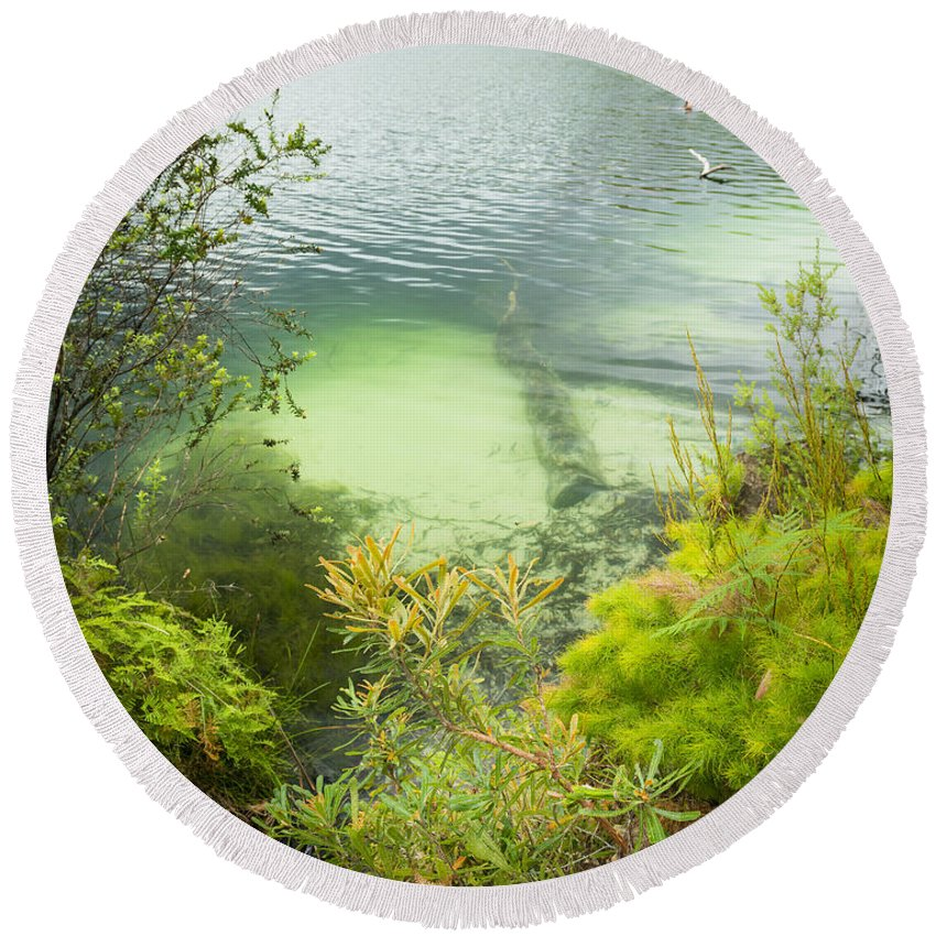 Blue Lake Round Beach Towel featuring the photograph Blue Lake Stradbroke Island by Tim Hester