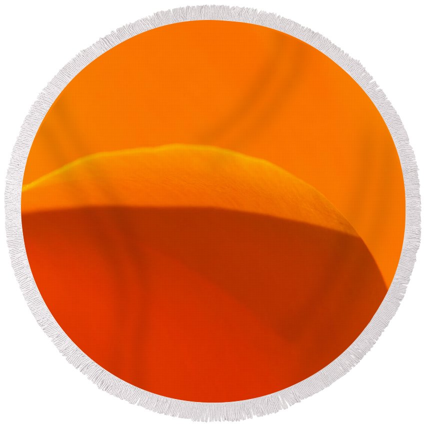 California Round Beach Towel featuring the photograph Californian Poppies by Alexander Fedin