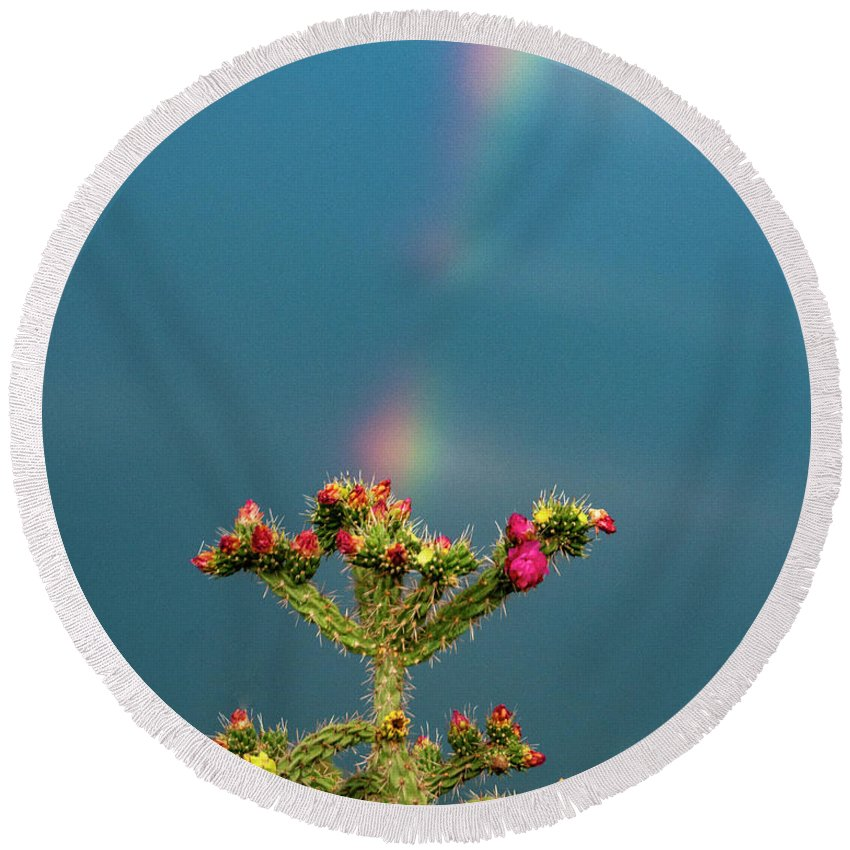 Natanson Round Beach Towel featuring the photograph Cholla Rainbow by Steven Natanson