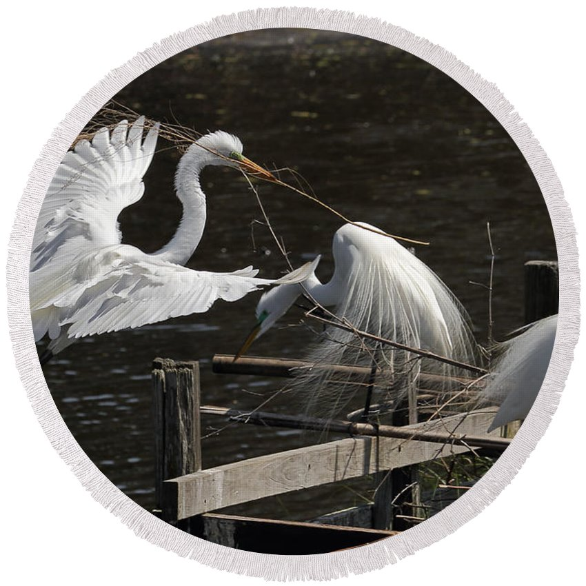 Egret Round Beach Towel featuring the photograph Egret 43 by Kristopher Bedgood