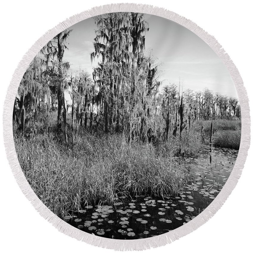 Swamp Round Beach Towel featuring the photograph Faces Of The Swamp, No. 7 by Elie Wolf