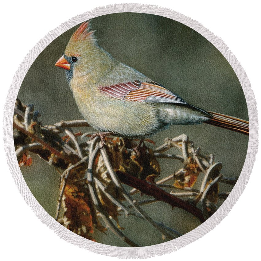 Female Cardinal Round Beach Towel featuring the painting Female Cardinal by Ken Everett