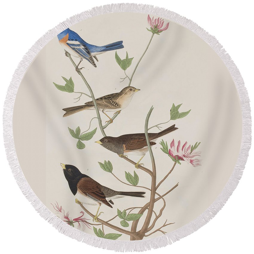 Audubon Round Beach Towel featuring the painting Finches by John James Audubon