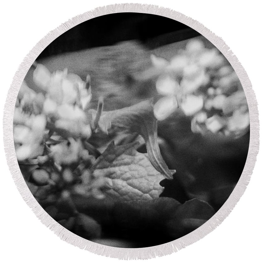 Blacj And White Round Beach Towel featuring the photograph flowers in Motion by Scott Wyatt