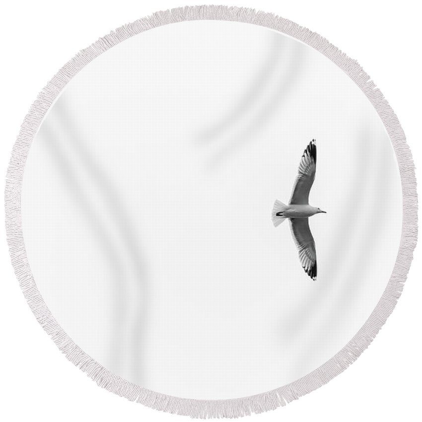 Seagull Round Beach Towel featuring the photograph Freedom In The Sky by Konstantin Khanov