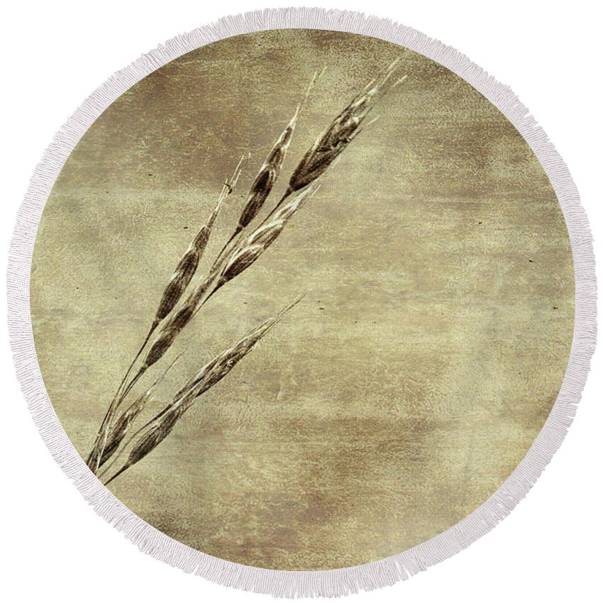 Grass Round Beach Towel featuring the photograph Grass Seeds by Les Palenik