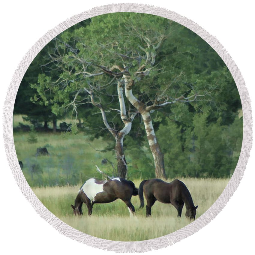 Horses Round Beach Towel featuring the photograph Grazing by Roland Stanke