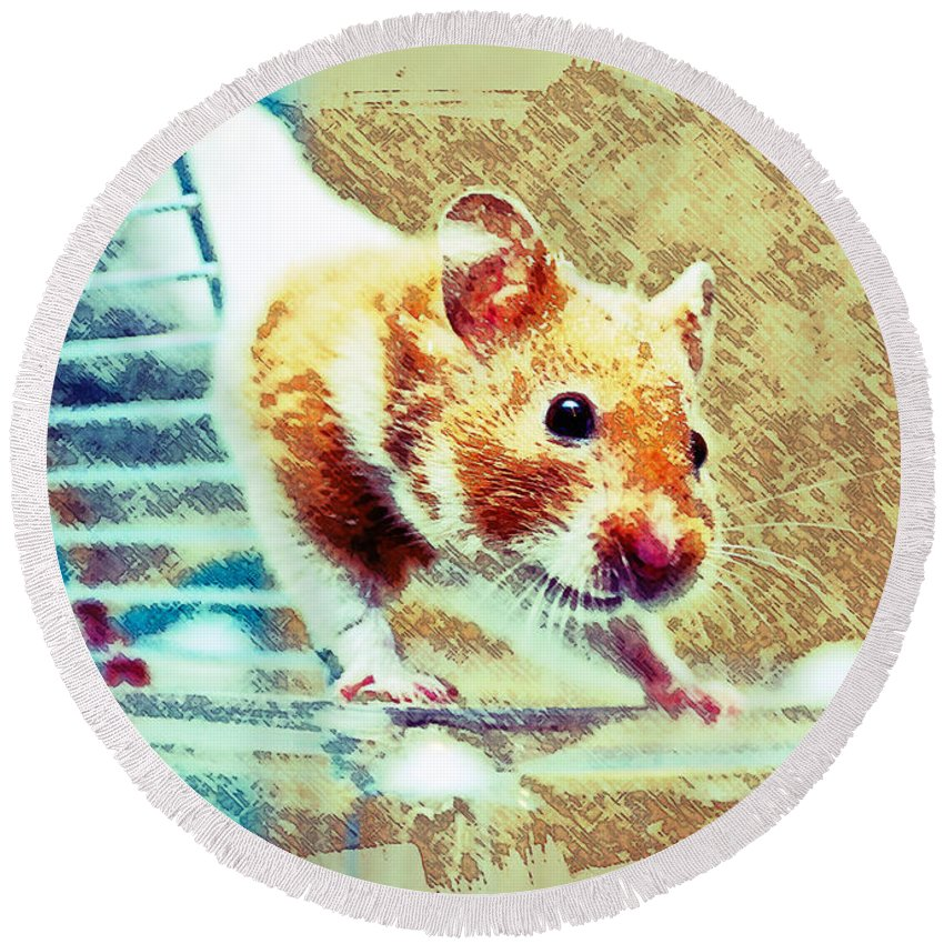 Animal Round Beach Towel featuring the photograph Hamster by Tom Gowanlock