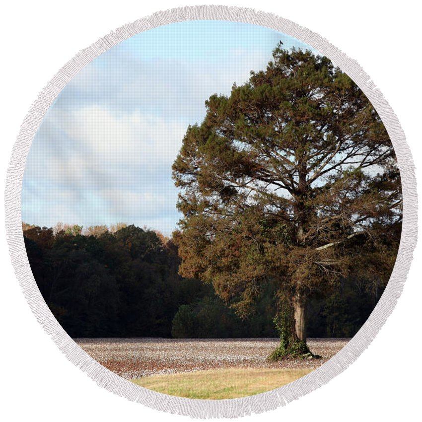 Trees Round Beach Towel featuring the photograph Home by Amanda Barcon