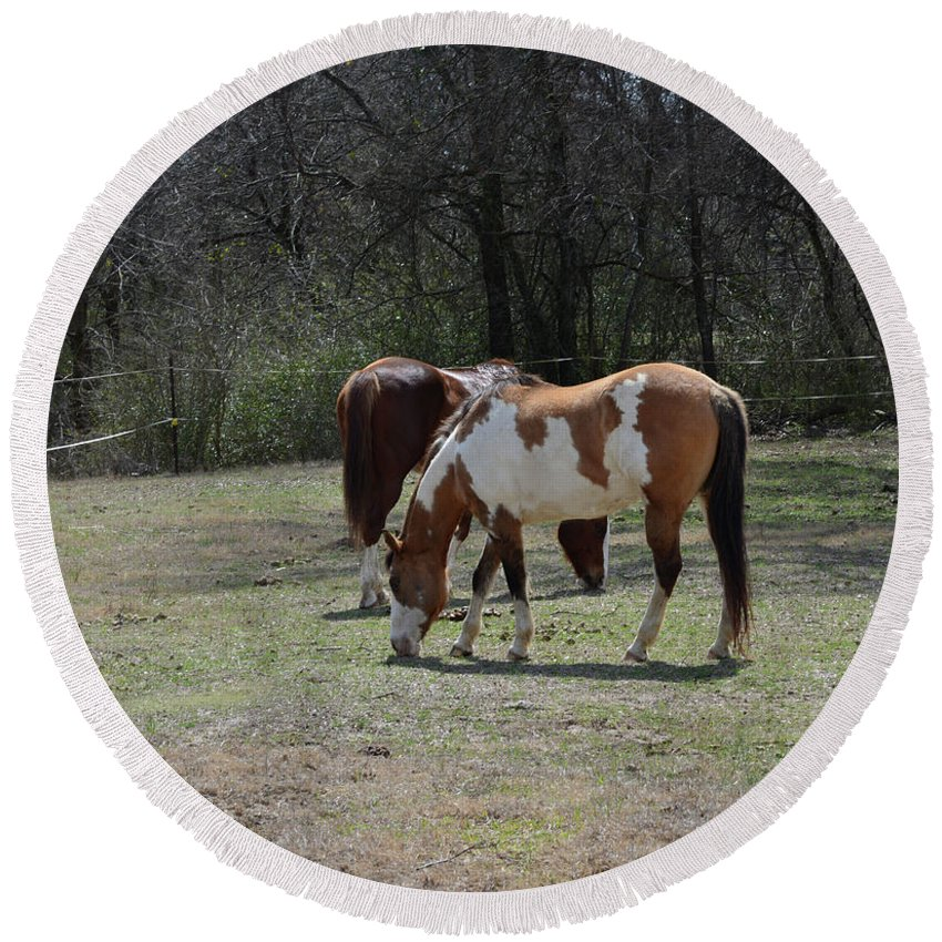 Horses Grazing Round Beach Towel featuring the photograph Horses Grazing by Ruth Housley