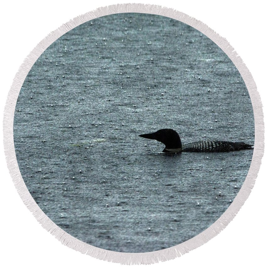 Common Loon Round Beach Towel featuring the photograph In The Rain by Linda Kerkau