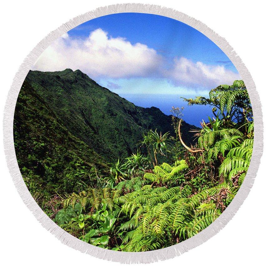 Hapu Tree Ferns Round Beach Towel featuring the photograph Koolau Summit Trail by Thomas R Fletcher