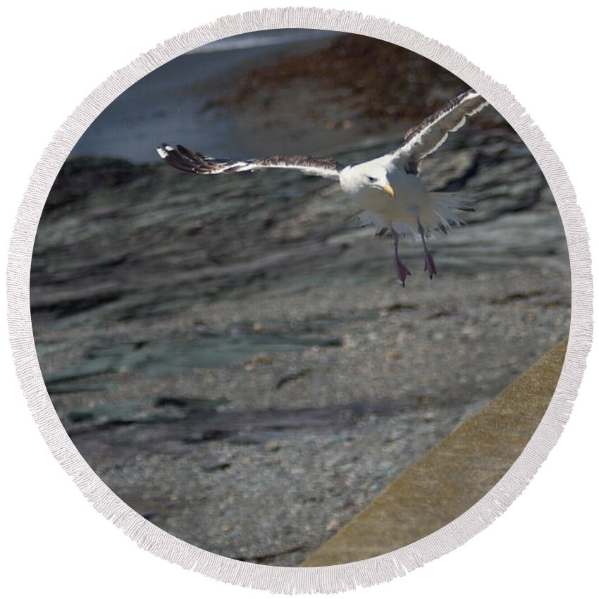 Sea Round Beach Towel featuring the photograph Landing Zone by Ray Konopaske